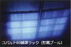 コバルト60線源ラック(貯蔵プール)の写真